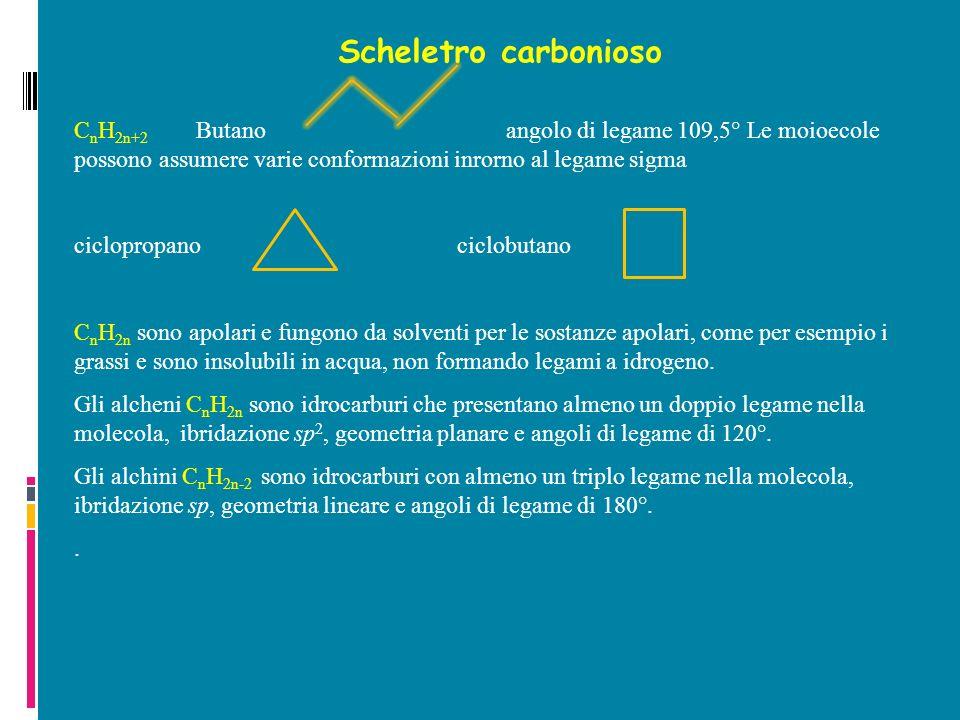 Scheletro carbonioso