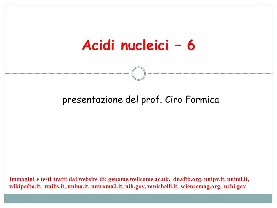 presentazione del prof. Ciro Formica