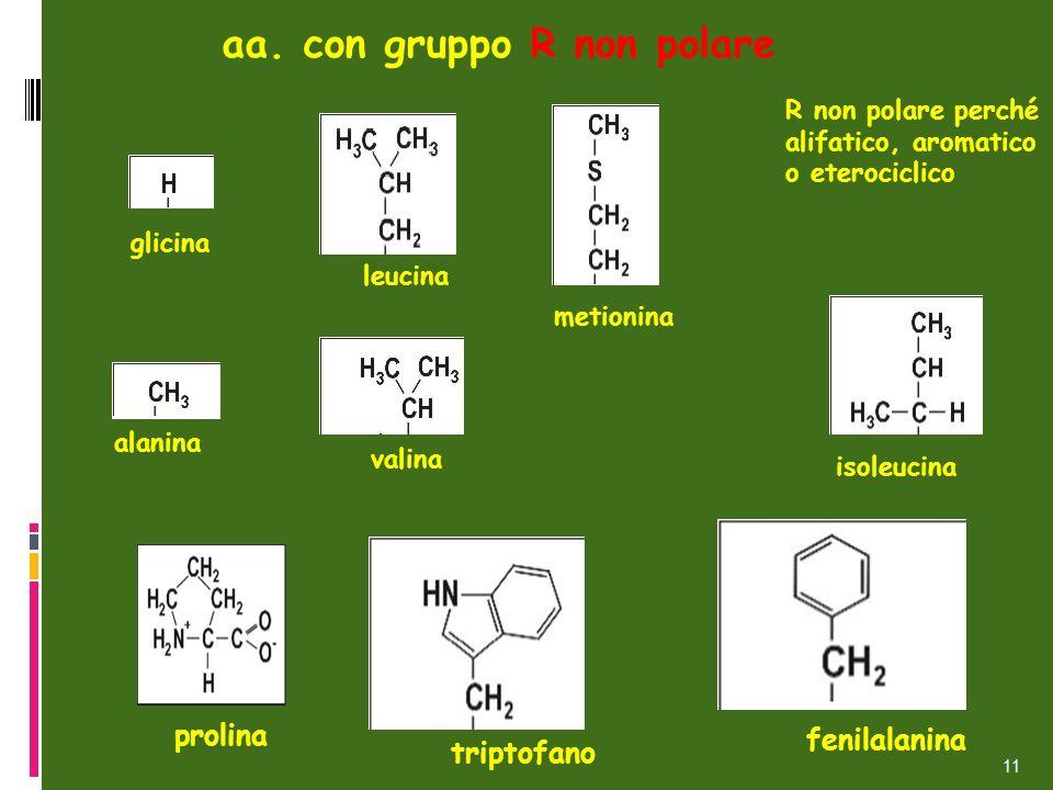 aa. con gruppo R non polare