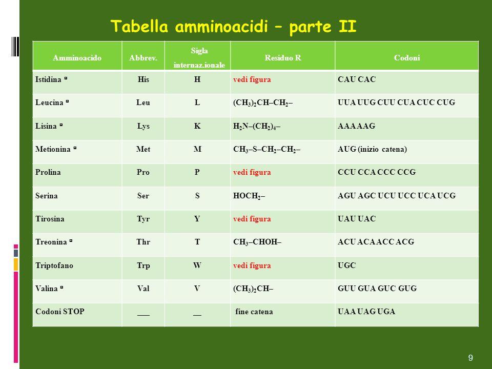Tabella amminoacidi – parte II