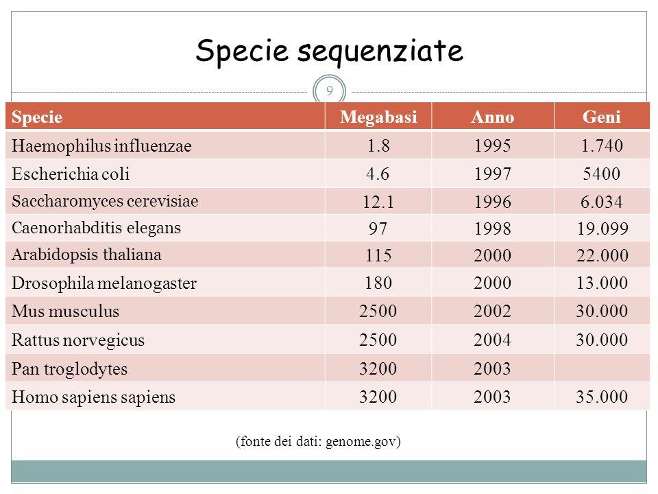 (fonte dei dati: genome.gov)