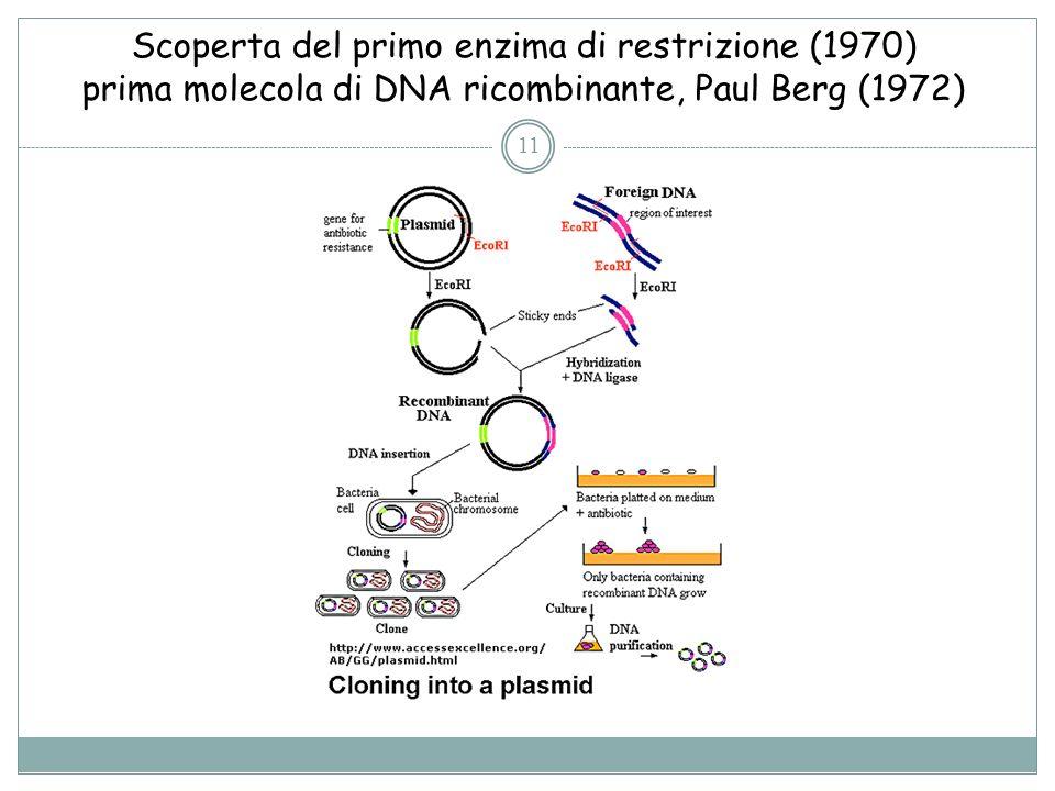 Scoperta del primo enzima di restrizione (1970) prima molecola di DNA ricombinante, Paul Berg (1972)