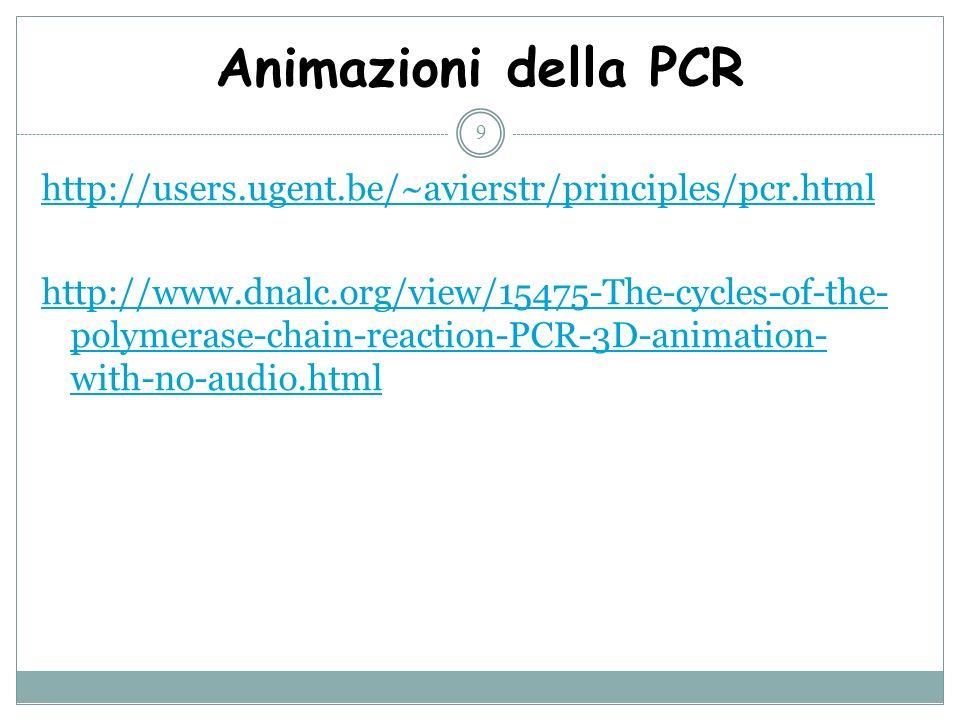 Animazioni della PCR