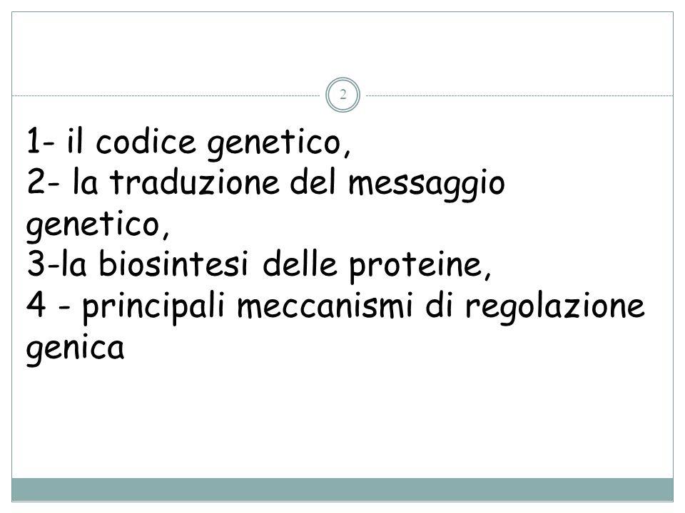 1- il codice genetico, 2- la traduzione del messaggio genetico, 3-la biosintesi delle proteine,