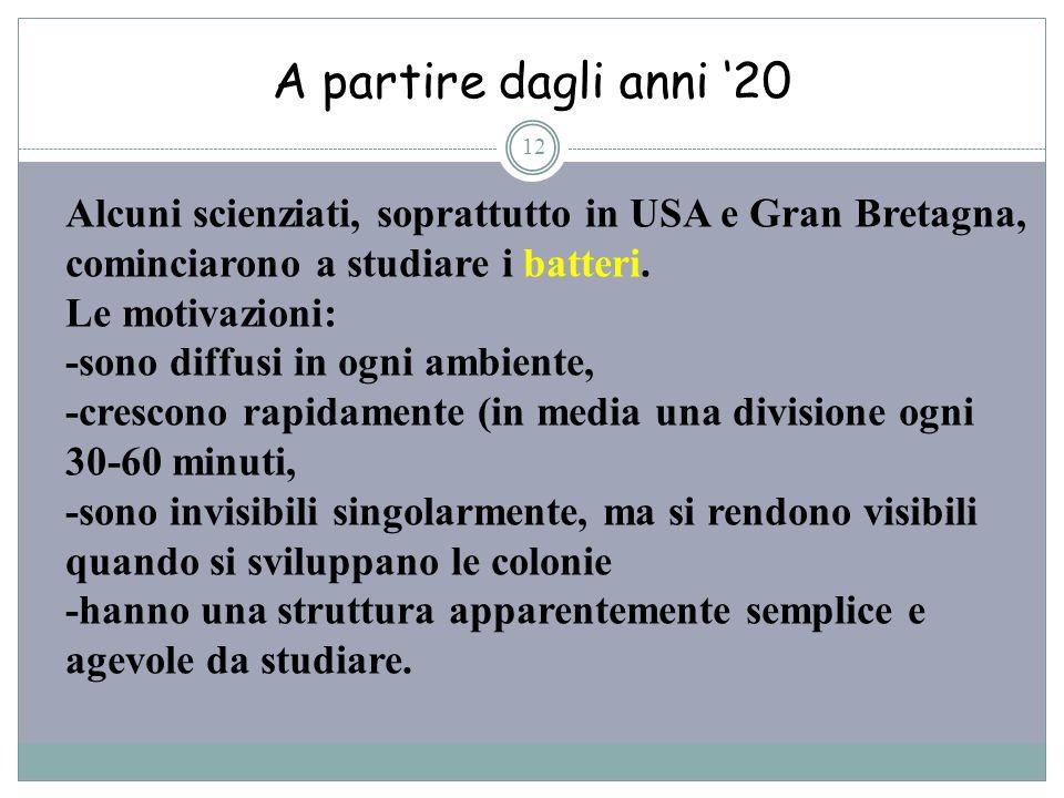 A partire dagli anni '20Alcuni scienziati, soprattutto in USA e Gran Bretagna, cominciarono a studiare i batteri.