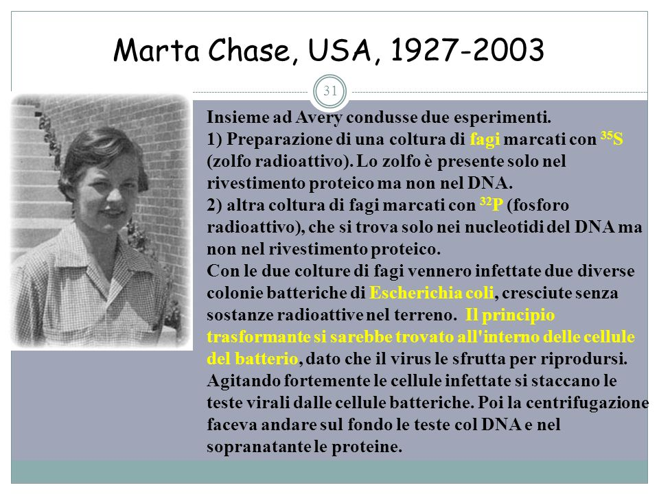 Marta Chase, USA, 1927-2003