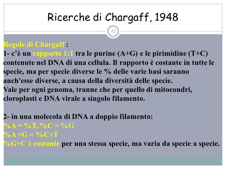 Ricerche di Chargaff, 1948 Regole di Chargaff :