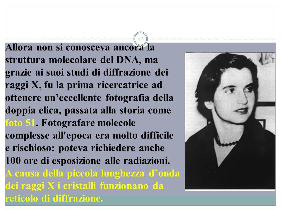 Allora non si conosceva ancora la struttura molecolare del DNA, ma grazie ai suoi studi di diffrazione dei raggi X, fu la prima ricercatrice ad ottenere un'eccellente fotografia della doppia elica, passata alla storia come foto 51.
