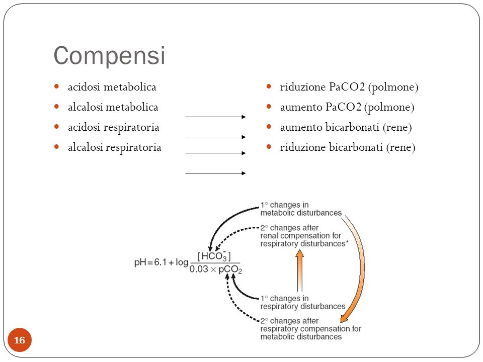Compensi acidosi metabolica alcalosi metabolica acidosi respiratoria