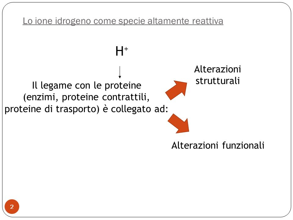 Lo ione idrogeno come specie altamente reattiva