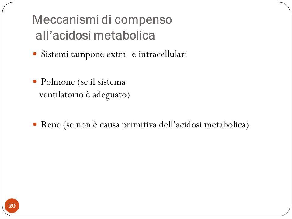 Meccanismi di compenso all'acidosi metabolica