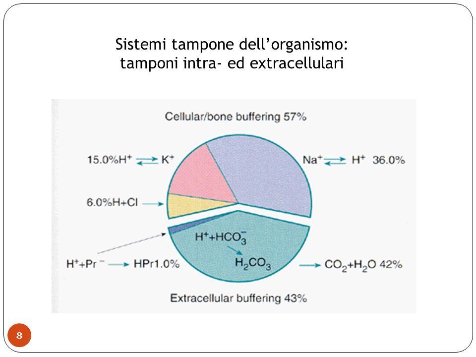 Sistemi tampone dell'organismo: tamponi intra- ed extracellulari