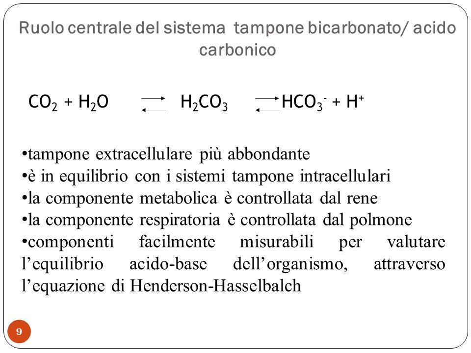 Ruolo centrale del sistema tampone bicarbonato/ acido carbonico