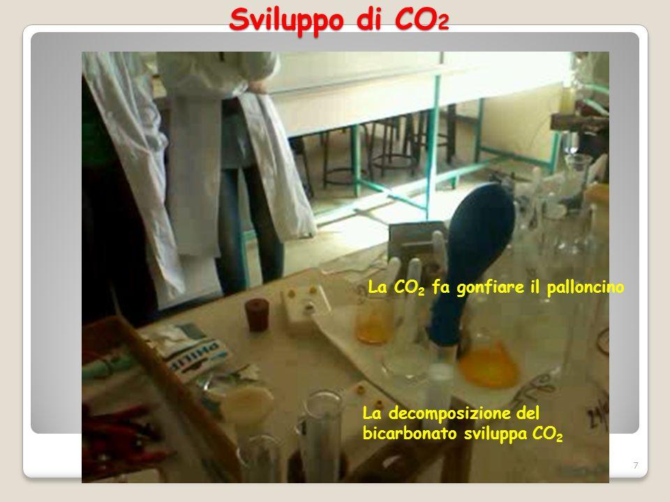 Sviluppo di CO2 La CO2 fa gonfiare il palloncino