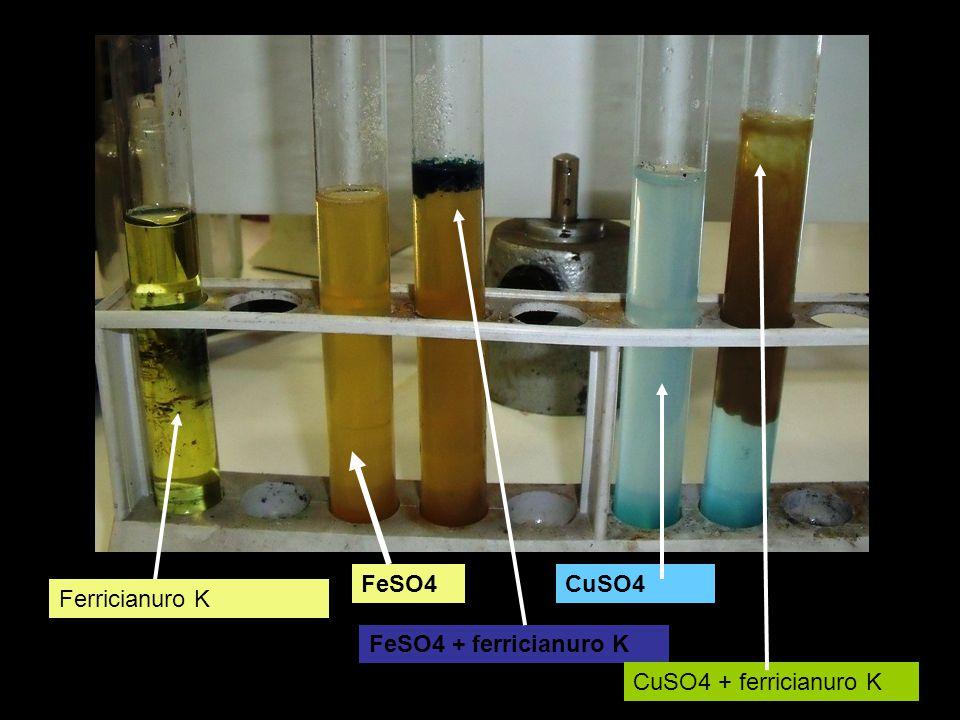 FeSO4 CuSO4 Ferricianuro K FeSO4 + ferricianuro K CuSO4 + ferricianuro K