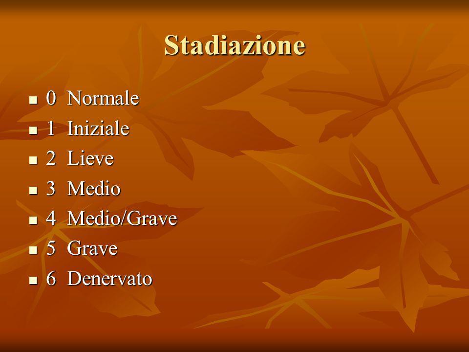Stadiazione 0 Normale 1 Iniziale 2 Lieve 3 Medio 4 Medio/Grave 5 Grave
