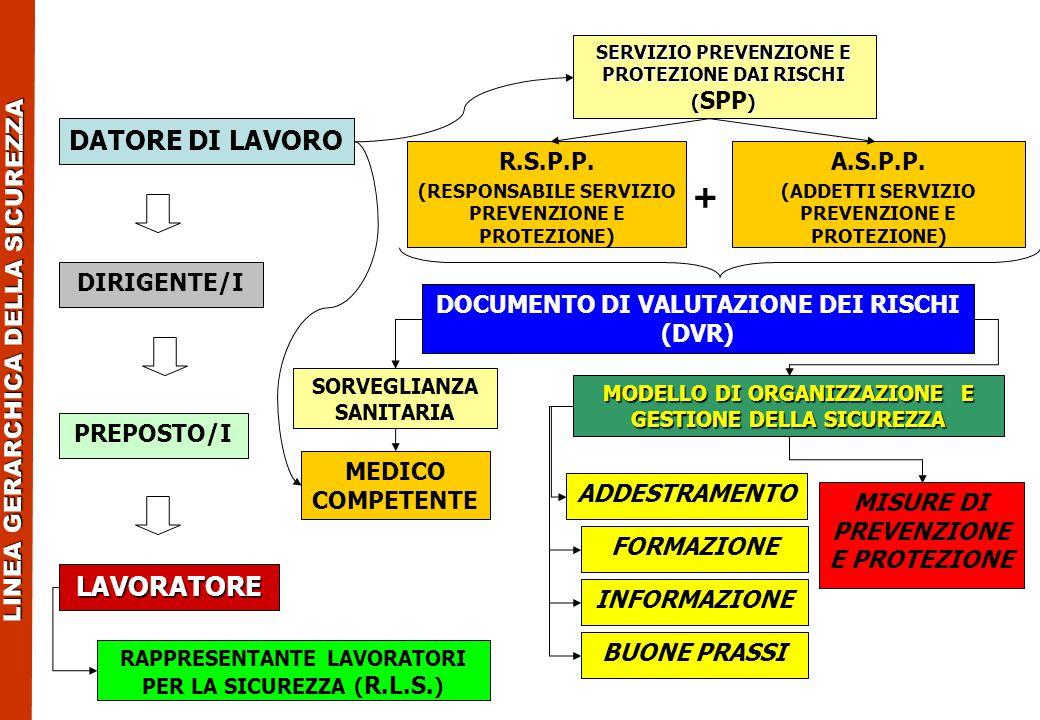+ DATORE DI LAVORO LAVORATORE R.S.P.P. A.S.P.P. DIRIGENTE/I