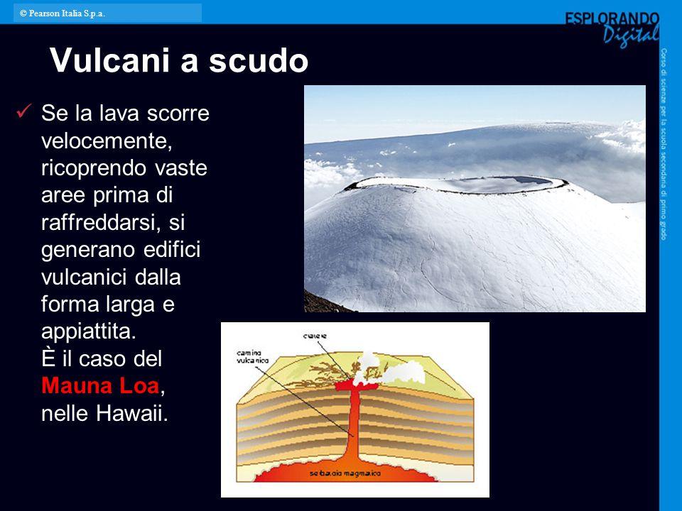 © Pearson Italia S.p.a. Vulcani a scudo.