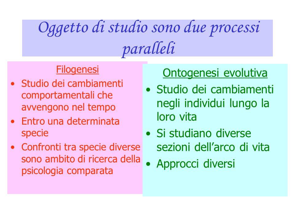 Oggetto di studio sono due processi paralleli