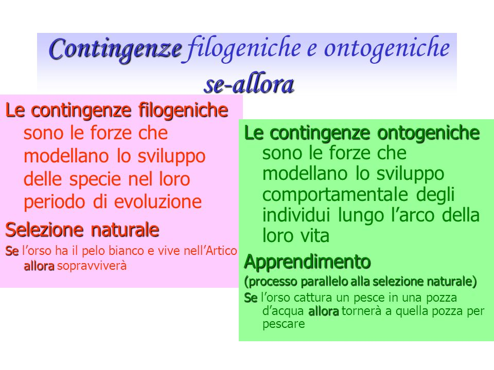 Contingenze filogeniche e ontogeniche se-allora