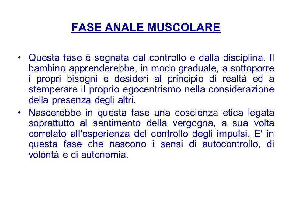 FASE ANALE MUSCOLARE