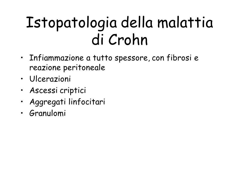 Istopatologia della malattia di Crohn