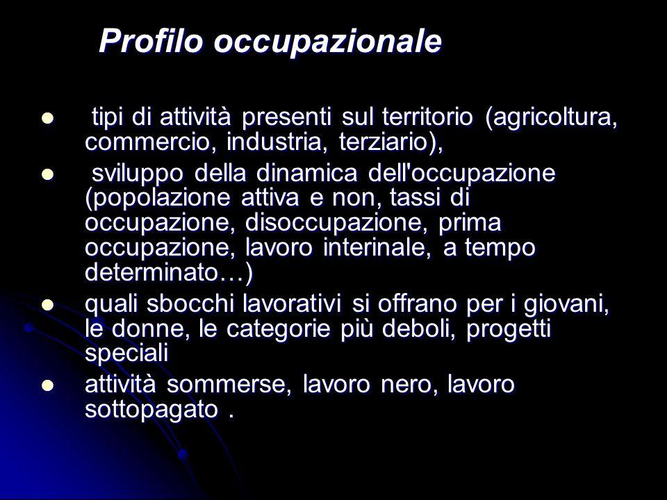 Profilo occupazionale