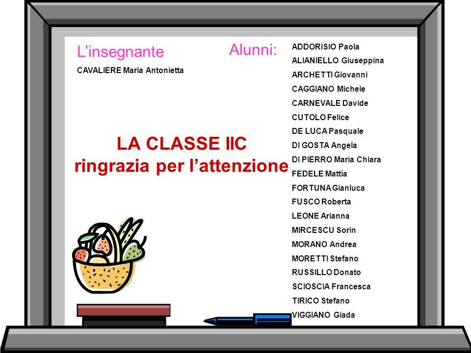 LA CLASSE IIC ringrazia per l'attenzione