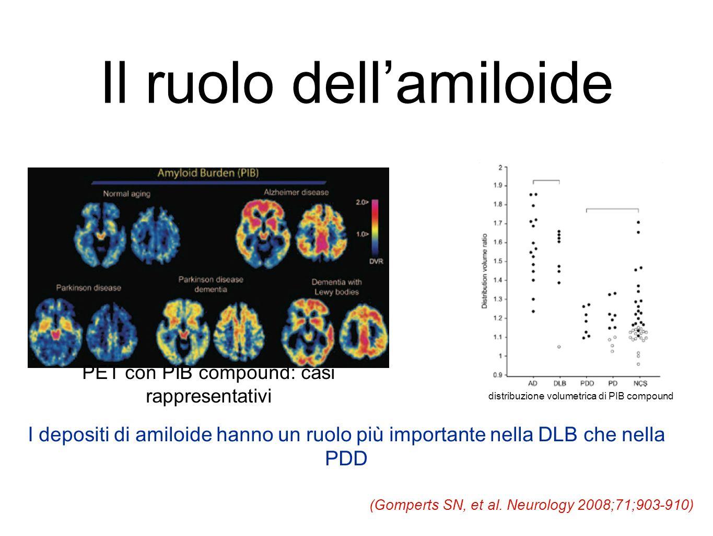 Il ruolo dell'amiloide