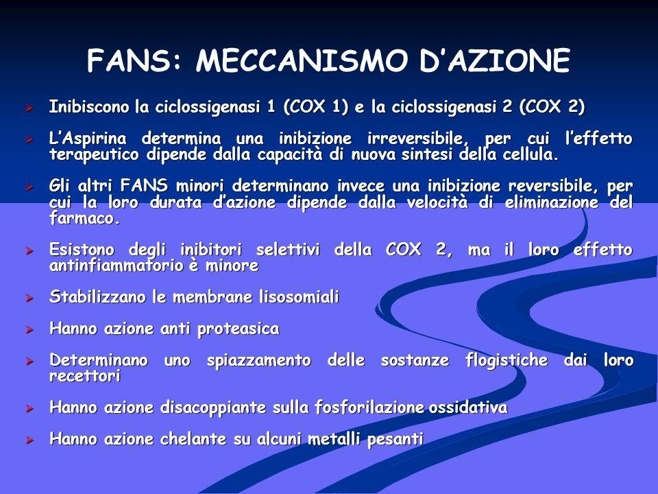 FANS: MECCANISMO D'AZIONE
