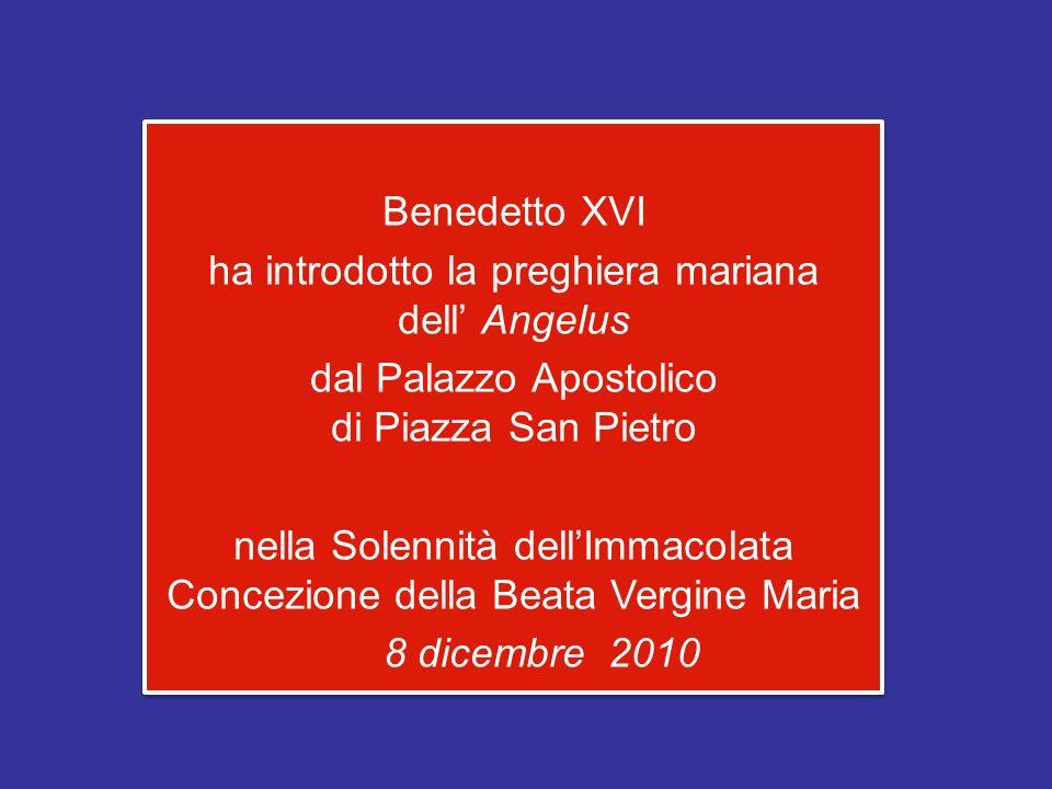 Benedetto XVI ha introdotto la preghiera mariana dell' Angelus dal Palazzo Apostolico di Piazza San Pietro nella Solennità dell'Immacolata Concezione della Beata Vergine Maria 8 dicembre 2010