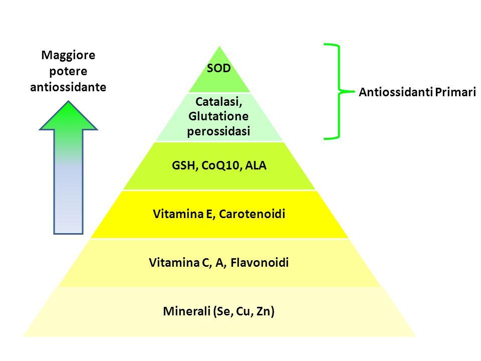 Maggiore potere antiossidante