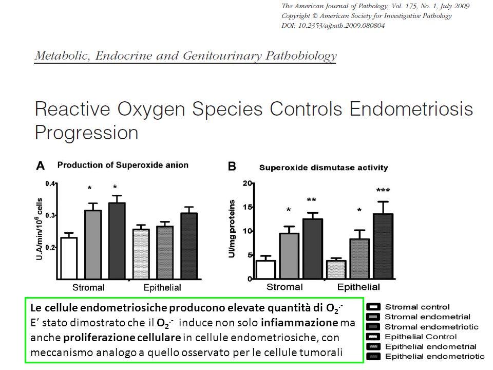 Le cellule endometriosiche producono elevate quantità di O2.-