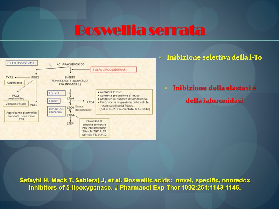 Boswellia serrata Inibizione selettiva della l-To