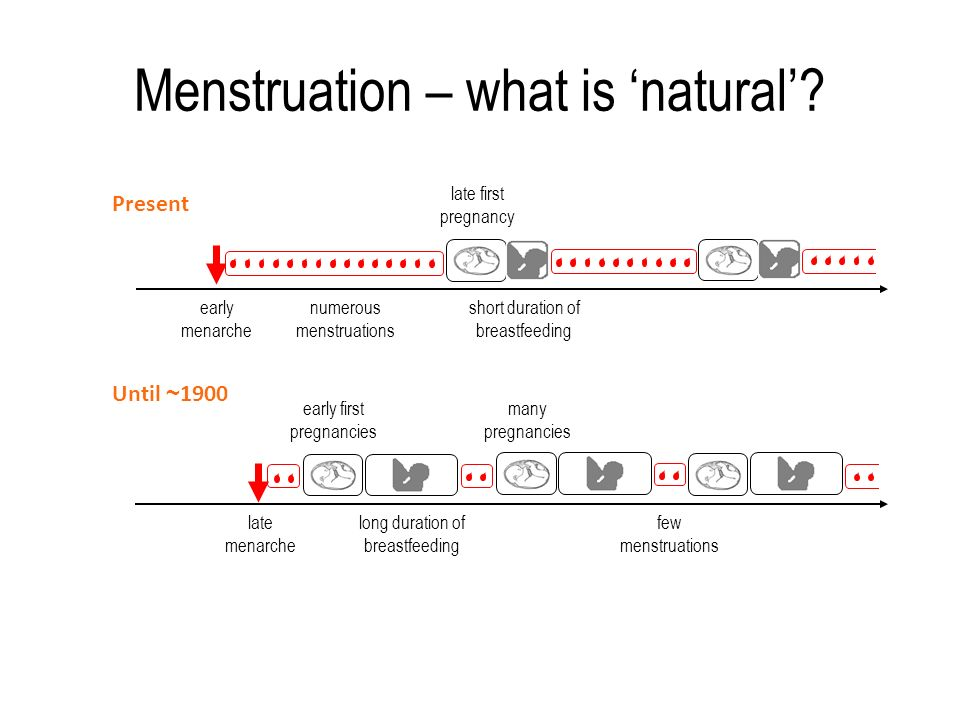 Menstruation – what is 'natural'