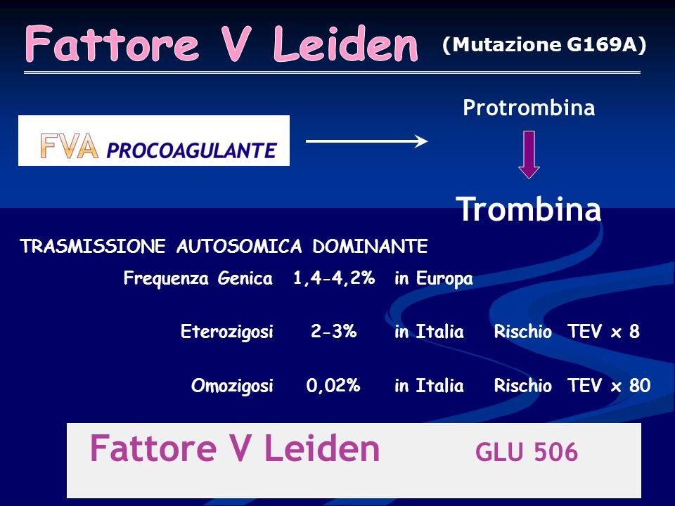 Fattore V Leiden GLU 506 Fattore V Leiden Trombina Protrombina