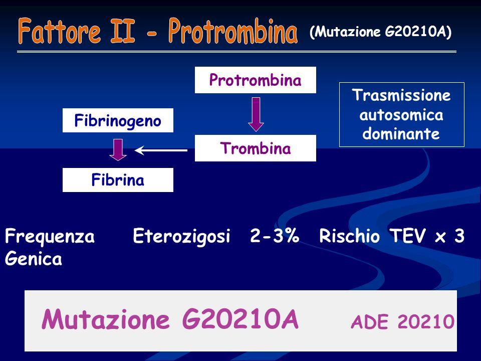 Fattore II - Protrombina Trasmissione autosomica dominante