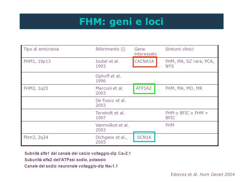 FHM: geni e loci Tipo di emicrania Riferimento (i) Gene interessato