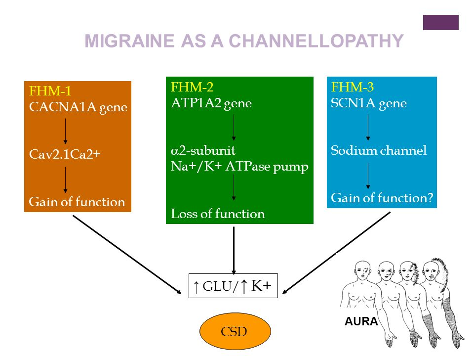 MIGRAINE AS A CHANNELLOPATHY