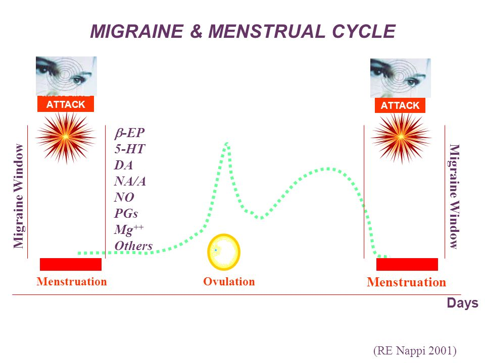 MIGRAINE & MENSTRUAL CYCLE