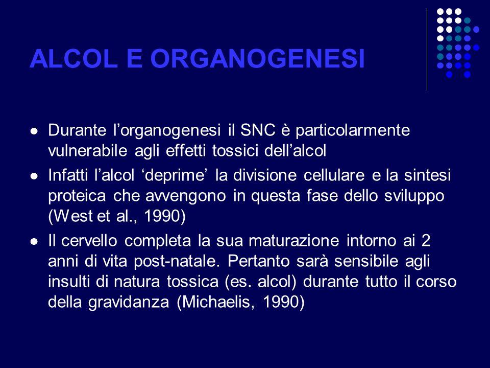 ALCOL E ORGANOGENESI Durante l'organogenesi il SNC è particolarmente vulnerabile agli effetti tossici dell'alcol.
