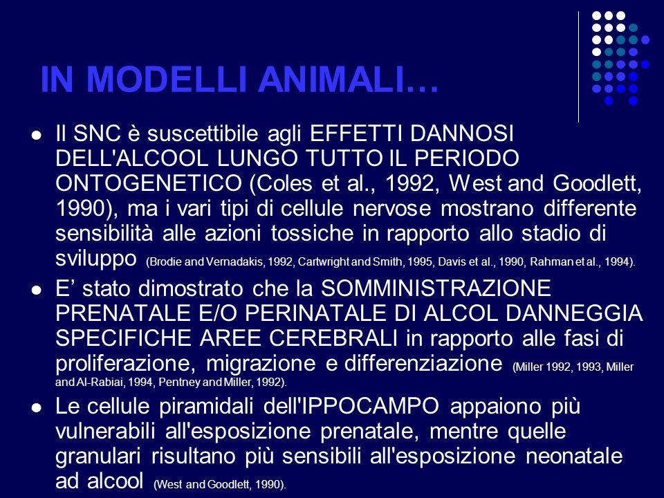IN MODELLI ANIMALI…