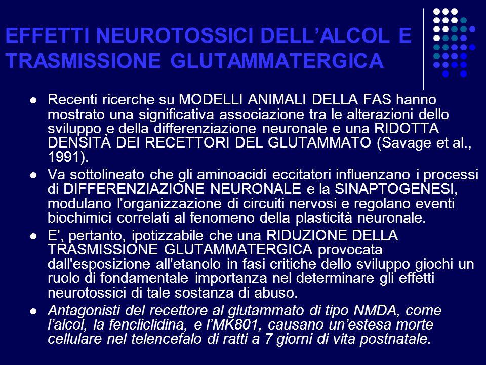 EFFETTI NEUROTOSSICI DELL'ALCOL E TRASMISSIONE GLUTAMMATERGICA