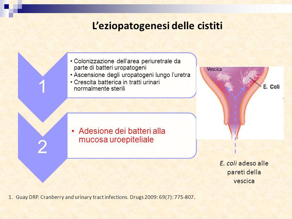 L'eziopatogenesi delle cistiti