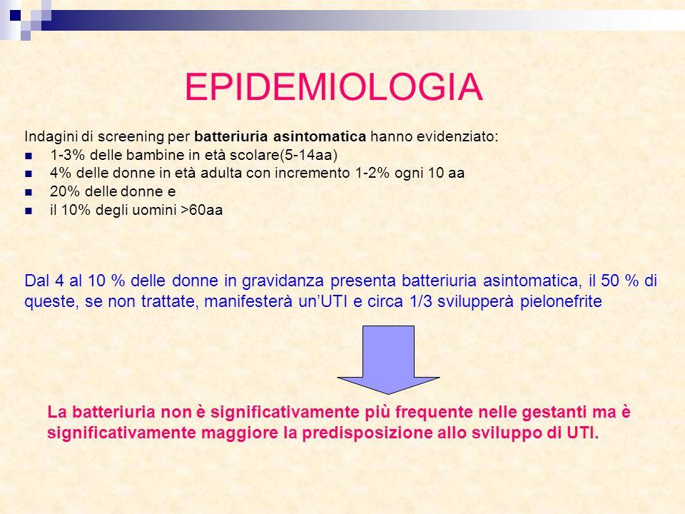 EPIDEMIOLOGIA Indagini di screening per batteriuria asintomatica hanno evidenziato: 1-3% delle bambine in età scolare(5-14aa)