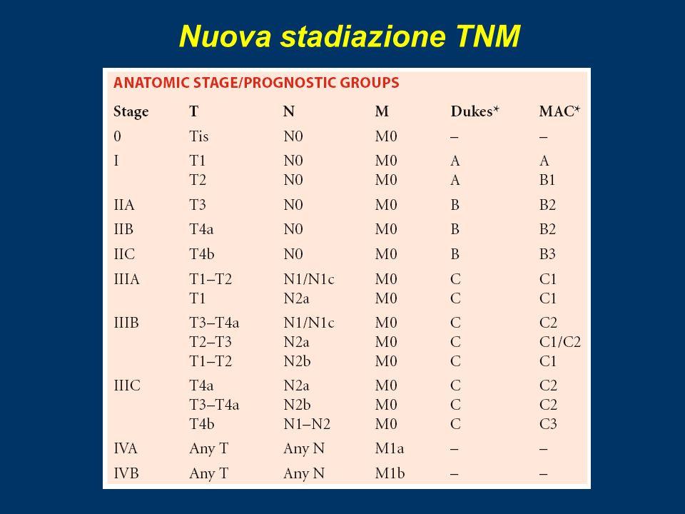 Nuova stadiazione TNM