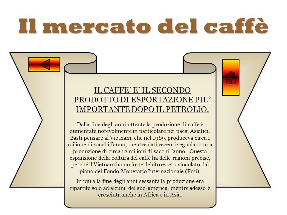Il mercato del caffè IL CAFFE' E' IL SECONDO PRODOTTO DI ESPORTAZIONE PIU' IMPORTANTE DOPO IL PETROLIO.