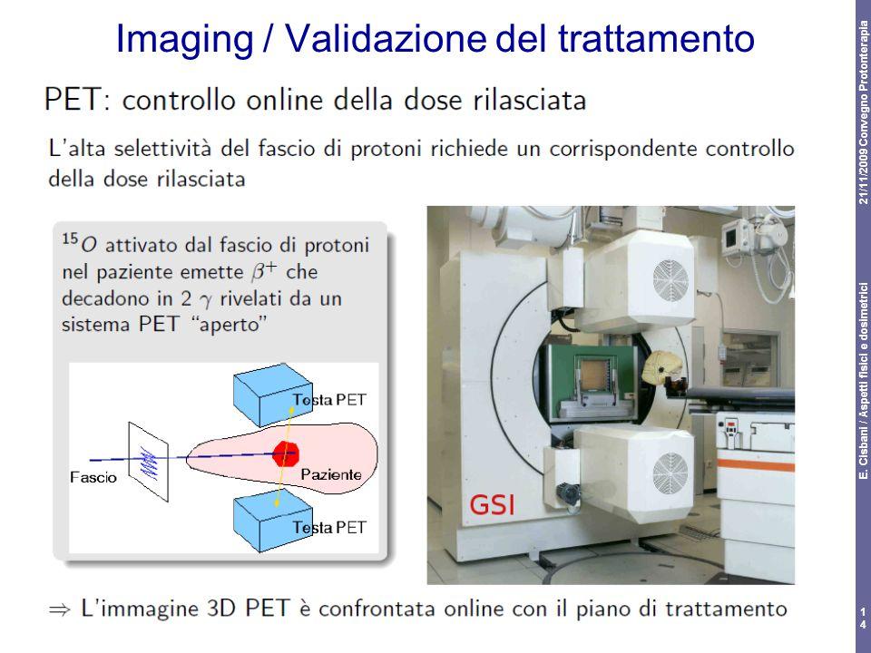 Imaging / Validazione del trattamento