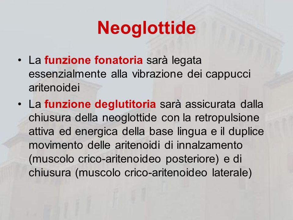 Neoglottide La funzione fonatoria sarà legata essenzialmente alla vibrazione dei cappucci aritenoidei.