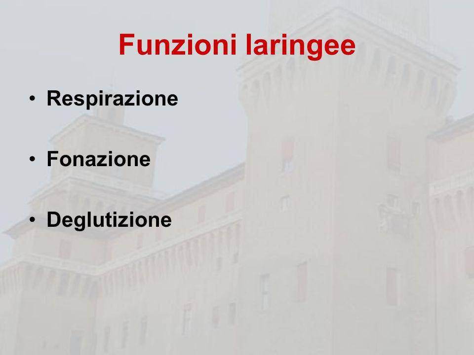 Funzioni laringee Respirazione Fonazione Deglutizione